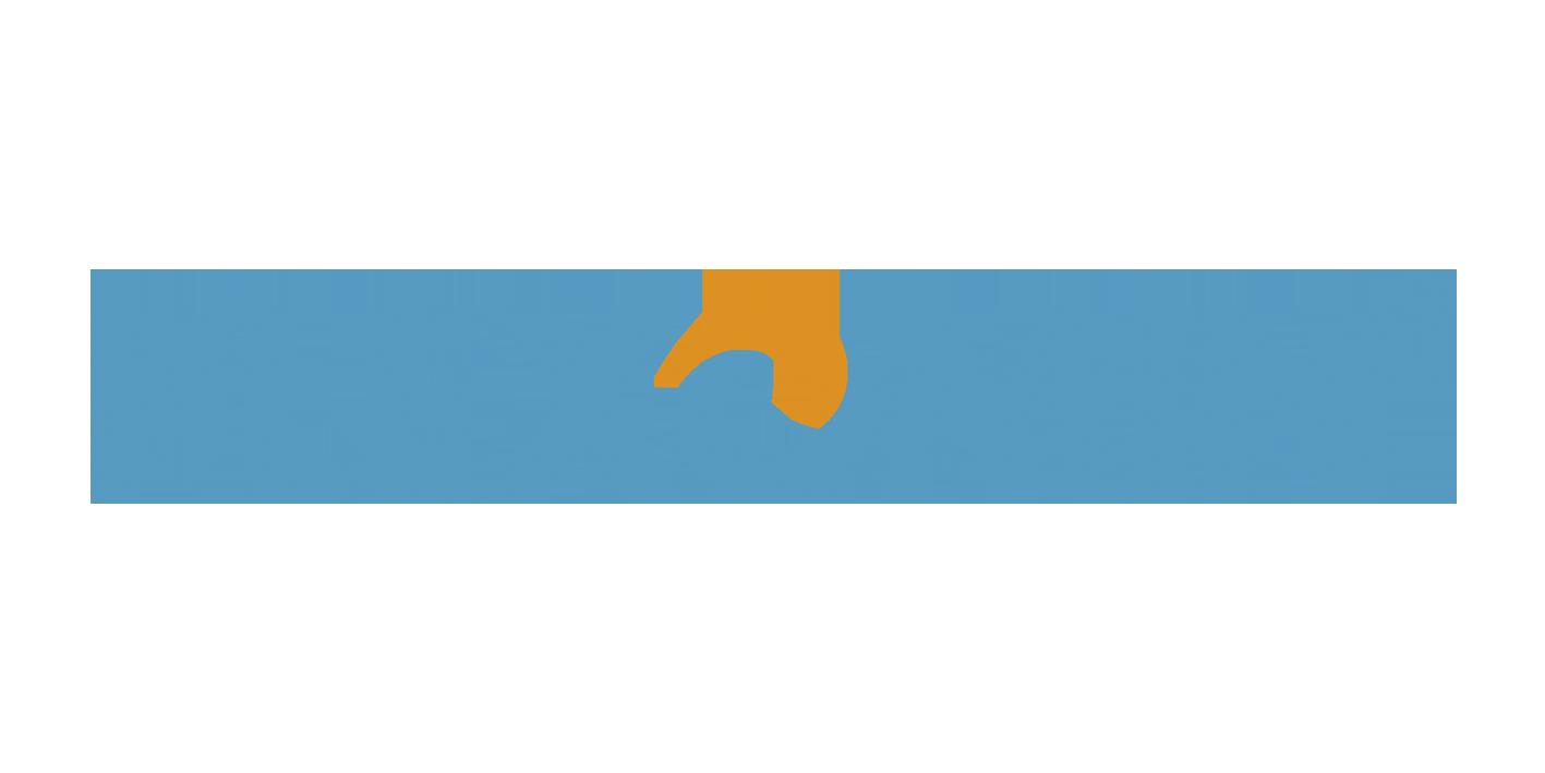 Plexomin Fe