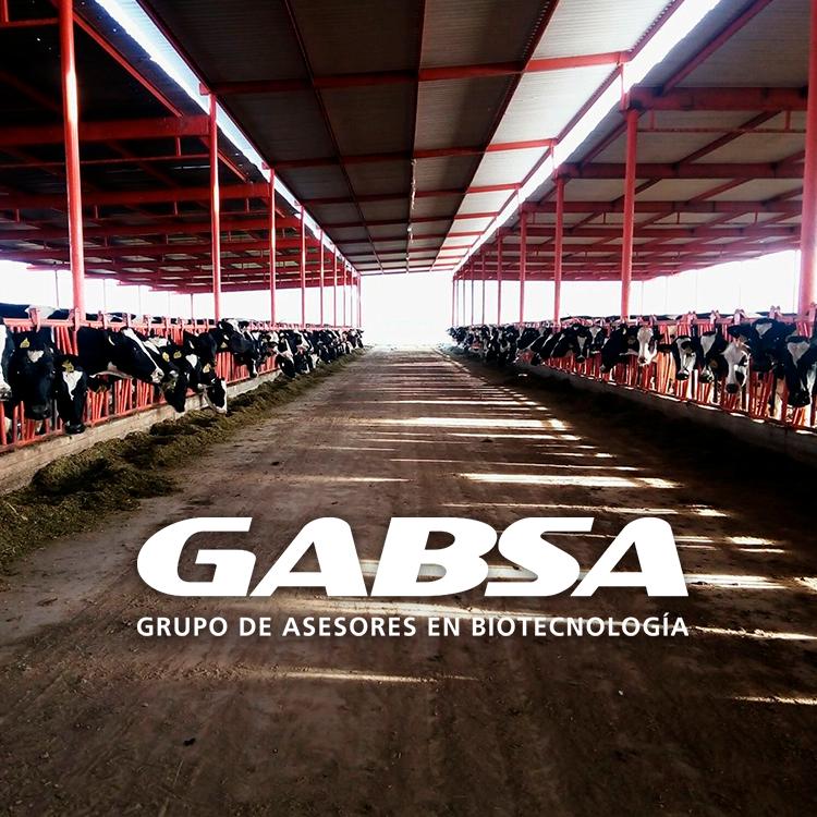 La biotecnología en la alimentación de bovinos, una mirada al futuro.